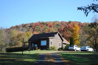 Rensselaer County Single Family Home For Sale: 22 Adams Rd