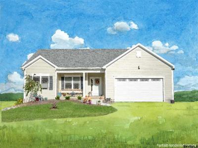 Bethlehem Single Family Home For Sale: 133c Kenwood Av