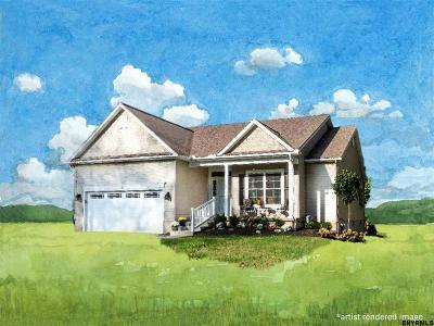 Bethlehem Single Family Home For Sale: 133d Kenwood Av