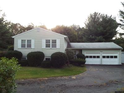 East Greenbush Single Family Home For Sale: 4 Placid Cir