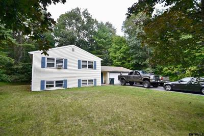 Saratoga Springs Single Family Home For Sale: 54 Rip Van La
