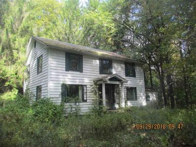 Columbia County Single Family Home For Sale: 14075 State Route 22