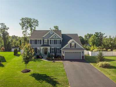 Single Family Home For Sale: 46 Chester Dr