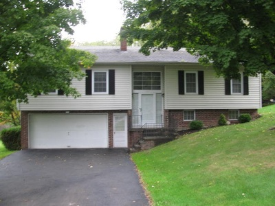 Johnstown Single Family Home For Sale: 916 South Perry St