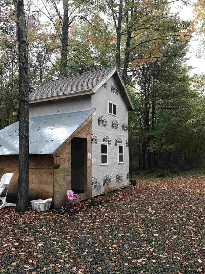 Schoharie County Single Family Home For Sale: 547 Guinea Rd