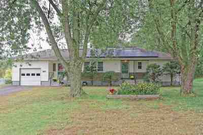 Single Family Home For Sale: 540 New Loudon Rd