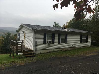 Schoharie County Single Family Home For Sale: 1142 Broome Center Rd