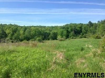Residential Lots & Land For Sale: 140 Ruckytucks Rd