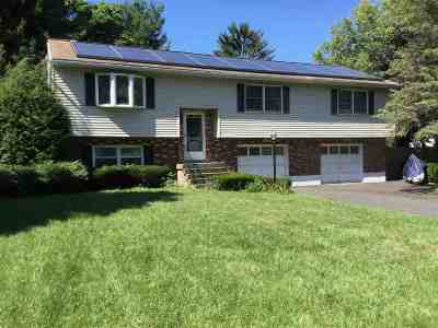 Colonie Single Family Home For Sale: 22 Jones Dr