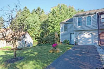 Clifton Park Single Family Home For Sale: 113 Westchester Dr