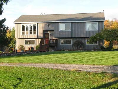 Schoharie County Single Family Home For Sale: 443 Snyder Rd