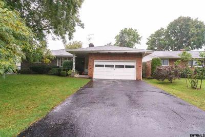 Albany Single Family Home For Sale: 100 Fairlawn Av