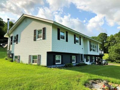 Schoharie County Single Family Home For Sale: 951 Charlotte Valley Rd