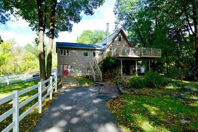 Halfmoon Single Family Home For Sale: 135 Canal Rd