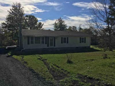 Albany County Single Family Home New: 739 County Route 405