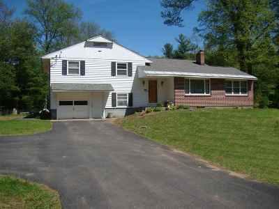 Stillwater Single Family Home For Sale: 231 County Route 75