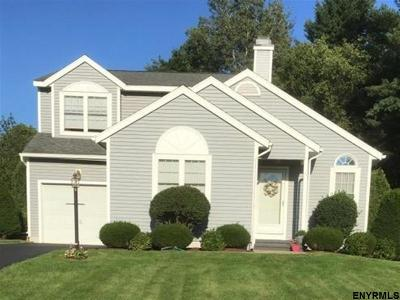 Halfmoon Single Family Home For Sale: 9 Crimson Ct