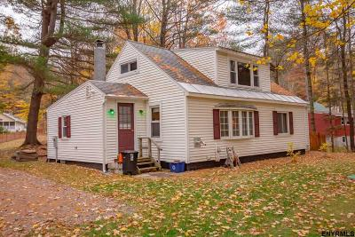 Saratoga County Single Family Home For Sale: 1402 South Shore Rd