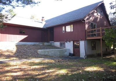 Columbia County Single Family Home For Sale: 384 County Route 25