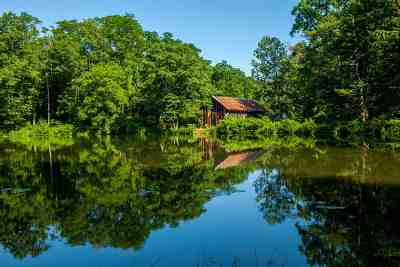Greene County Single Family Home For Sale: 96 Mirror Lake Rd