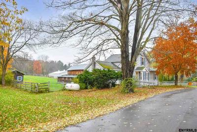 Columbia County Single Family Home For Sale: 259 Silvernail Rd