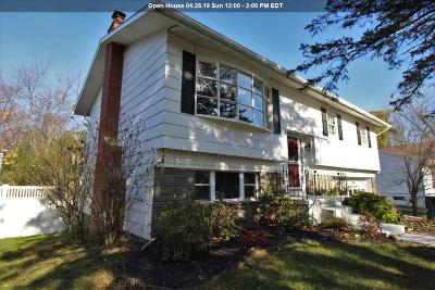 Niskayuna Single Family Home For Sale: 2293 Deborah Dr