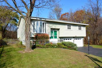 Colonie Single Family Home For Sale: 32 Norbrick Dr