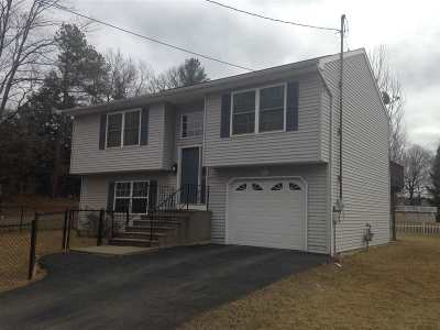 Schenectady Single Family Home For Sale: 436 Elm St