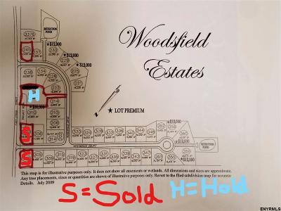 Guilderland Single Family Home For Sale: 241 Woodsfield Dr