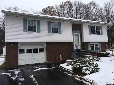 Cohoes Single Family Home For Sale: 118 Spring Hollow Dr