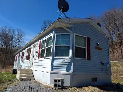 Schoharie County Single Family Home For Sale: 698 Stone Store Rd