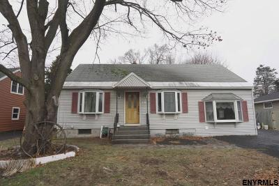 Rotterdam Single Family Home For Sale: 1036 Peter Rd