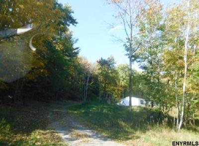 Schoharie County Single Family Home For Sale: 959 Cotton Hill Rd