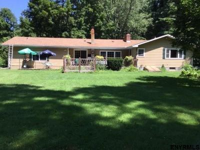 Albany County Single Family Home New: 48 Rupert Rd