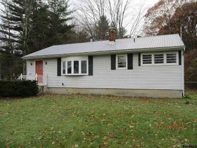 Saratoga County Single Family Home New: 287 Rowland St