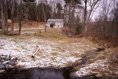 Rensselaer County Single Family Home New: 54 Bert Hager Rd