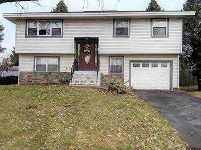 Troy Single Family Home New: 113 Delaware Av