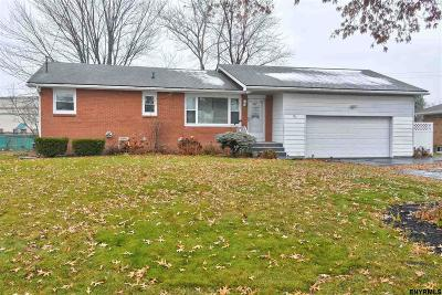 Colonie Single Family Home For Sale: 27 Louise Dr