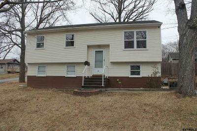 East Greenbush Single Family Home For Sale: 24 Electric Av