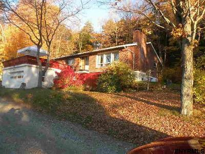 Columbia County Single Family Home For Sale: 144 Peaceful Valley Rd