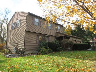 Glenville Single Family Home For Sale: 1 Homestead Rd
