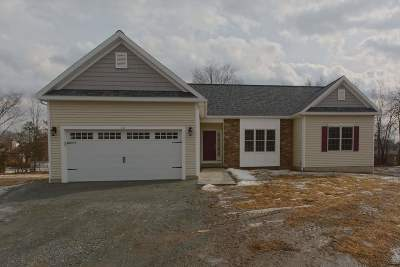 Colonie Single Family Home For Sale: 352 Sand Creek Rd