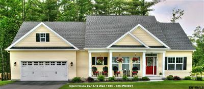 Saratoga County Single Family Home New: 729 Jane St