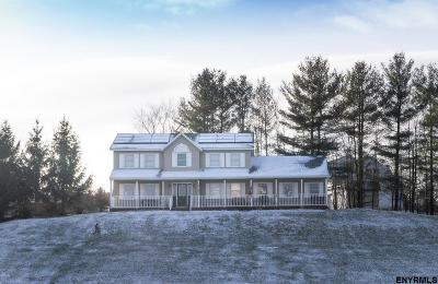 Rensselaer County Single Family Home For Sale: 495 Rt 355
