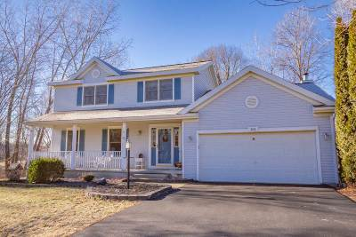 Guilderland Single Family Home For Sale: 101 Halfmoon Dr
