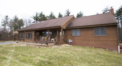 Saratoga Single Family Home For Sale: 269 State Rt 423
