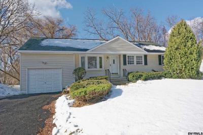 Colonie Single Family Home For Sale: 33 College View Dr