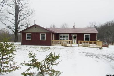 Rensselaer Single Family Home For Sale: 770 Pond Hill Rd
