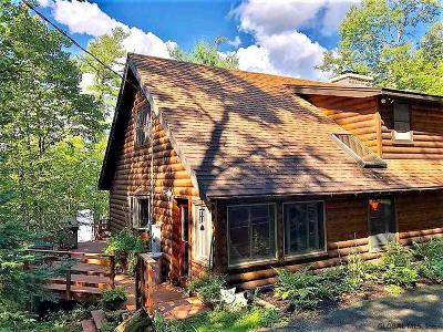 Essex County Single Family Home For Sale: 745 Adirondack Rd