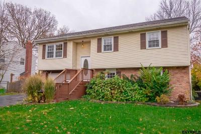 Colonie Single Family Home For Sale: 4 Abby Rd